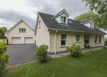 Thumbnail 4 bed detached house for sale in 103, Carnreagh, Hillsborough