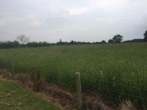 Thumbnail Land to let in Welford Road, Long Marston, Stratford-Upon-Avon