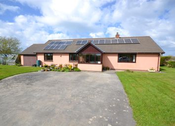 Thumbnail 3 bed detached bungalow for sale in Felinwynt, Cardigan