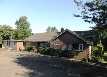 Thumbnail 4 bed detached house to rent in Tathwell, Louth