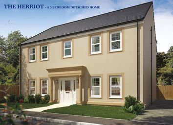 "Thumbnail 5 bed detached house for sale in ""The Herriot"" at Capelrig Road, Newton Mearns, Glasgow"