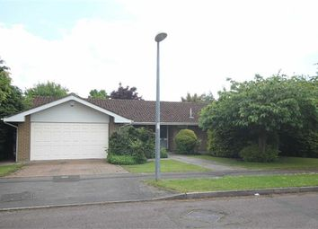 Thumbnail 4 bed detached bungalow for sale in Okebourne Park, Swindon