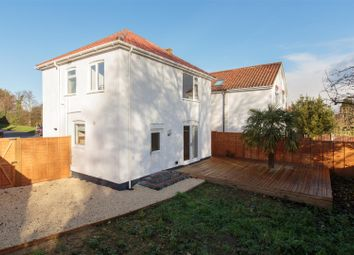 Thumbnail 3 bed detached house for sale in Plumstead Road, Norwich