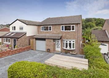 Thumbnail 4 bed detached house for sale in Valley Way, Exmouth