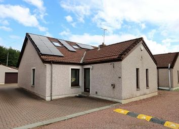 Thumbnail 4 bed semi-detached house to rent in Forth, Lanark