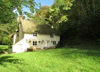 Thumbnail 4 bed cottage for sale in Silverton, Exeter