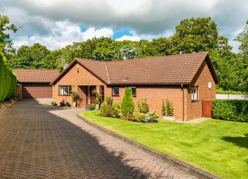 Thumbnail 5 bed bungalow for sale in Lydford Green, Standish, Wigan
