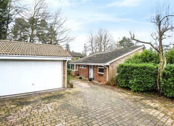 Thumbnail 3 bed detached bungalow for sale in Cavendish Meads, Sunninghill, Berkshire