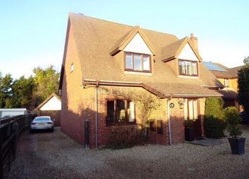 Thumbnail 4 bedroom detached house for sale in Catisfield Lane, Fareham