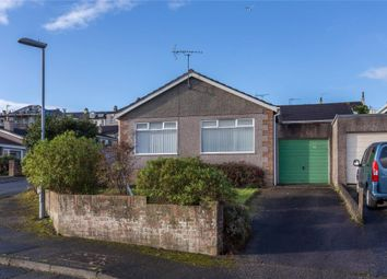 Thumbnail 3 bed detached bungalow to rent in Pounds Park, Saltash, Cornwall