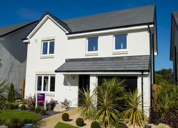 "Thumbnail 4 bed detached house for sale in ""The Geddes"" at Mayshade Road, Loanhead"