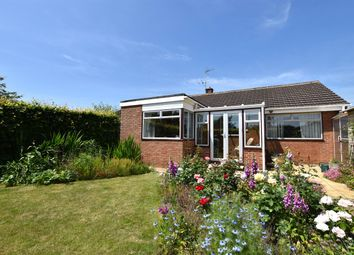 Thumbnail 3 bed bungalow for sale in Pinhoe, Exeter, Devon
