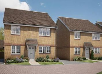 Thumbnail 4 bed detached house for sale in The Green, Stotfold
