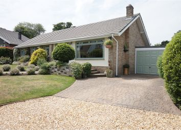Thumbnail 4 bedroom detached bungalow for sale in Spencer Close, Ryde