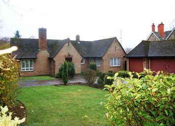 Thumbnail 3 bed detached bungalow for sale in Wellingborough Road, Abington, Northampton