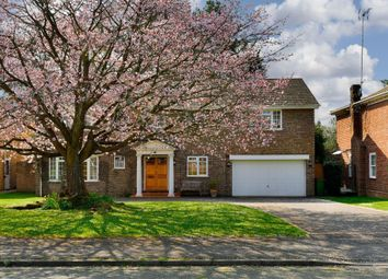 6 bed detached house to rent in Pine Walk, Cobham KT11