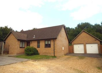 Thumbnail 3 bedroom bungalow for sale in Six Mile Bottom, Newmarket, Cambridgeshire