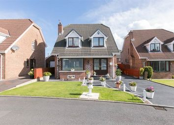 Thumbnail 3 bed detached house for sale in 14, Glendarragh, Belfast