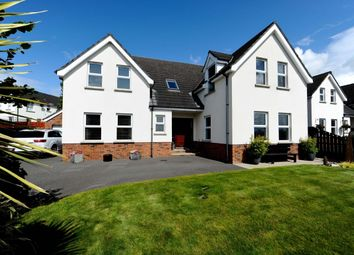 Thumbnail 4 bed detached house for sale in Turnstone, Teal Rocks, Newtownards