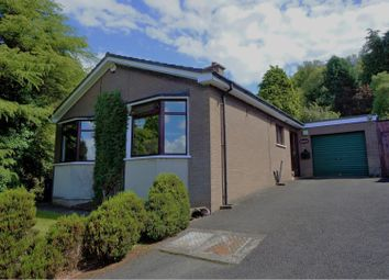 Thumbnail 3 bed detached bungalow for sale in Lower Braniel Road, Belfast