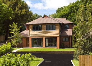 Thumbnail 4 bed detached house for sale in Roffes Lane, Chaldon