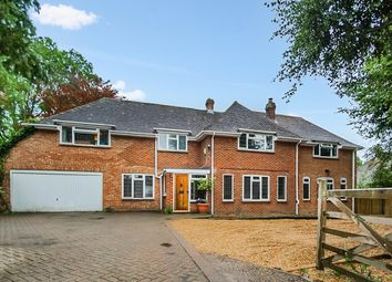 Thumbnail 6 bed detached house to rent in Thornden, Cowfold, Horsham
