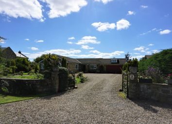 Thumbnail 4 bed detached bungalow for sale in Swale Pasture Lane, Catterick Village