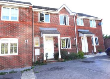 Thumbnail 3 bed property to rent in Hollyacres, Worthing