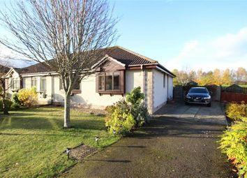 Thumbnail 3 bed semi-detached bungalow for sale in 17, Miller Road, Inverness