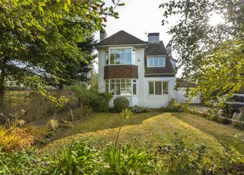 Thumbnail 4 bed detached house to rent in Elrington Road, Hove, East Sussex