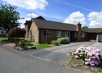 Thumbnail 3 bed bungalow for sale in Freshfields, Lea, Preston, Lancashire