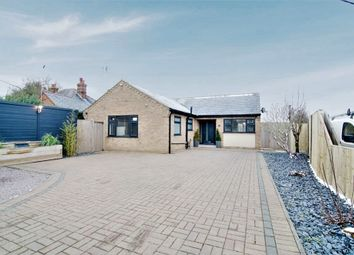School Road, Upwell, Wisbech, Norfolk PE14. 3 bed detached bungalow for sale