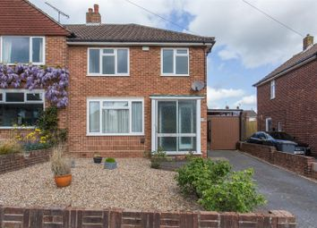 Thumbnail 3 bed property to rent in Whitehall Gardens, Canterbury