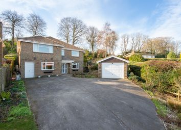 Thumbnail 5 bed detached house for sale in Coombe Drove, Bramber, Steyning