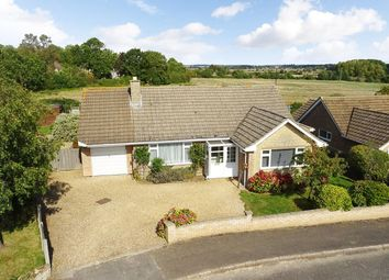 Thumbnail 2 bedroom detached bungalow for sale in St. Peters Road, Oundle, Peterborough