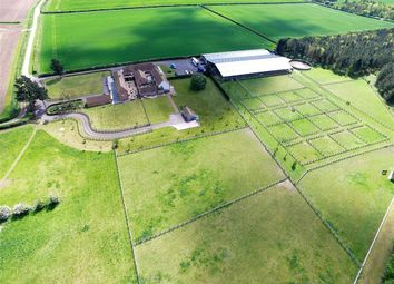 Thumbnail 3 bed equestrian property for sale in Mattersey Road, Lound, Retford