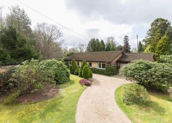 Thumbnail 4 bed detached bungalow for sale in Beaconsfield Road, Chelwood Gate, Haywards Heath