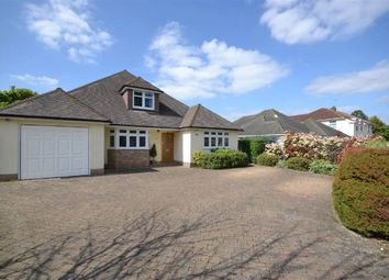 Thumbnail 5 bed detached bungalow to rent in Beverley Close, Epsom