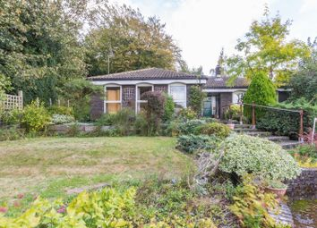 Thumbnail 4 bed detached bungalow for sale in Meadow Close, Bridge, Canterbury