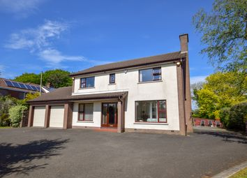 Thumbnail 4 bedroom detached house for sale in Hillhead Road, Ballyclare