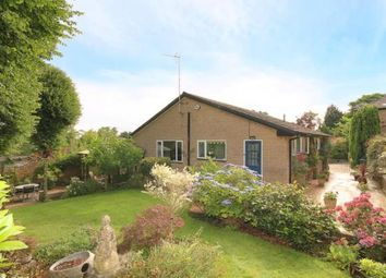 Thumbnail 3 bedroom bungalow for sale in Chelsea Road, Sheffield, South Yorkshire