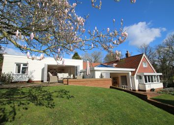 Thumbnail 4 bed detached house for sale in Rye Road, Wittersham, Kent