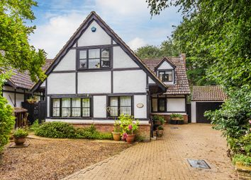 Thumbnail 4 bed detached house for sale in Eden Brook, Lingfield