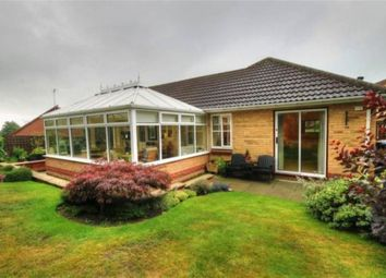 Thumbnail 3 bed bungalow to rent in Graythwaite, Chester Le Street
