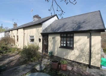 Thumbnail 4 bed semi-detached house for sale in Aberystwyth, Ceredigion