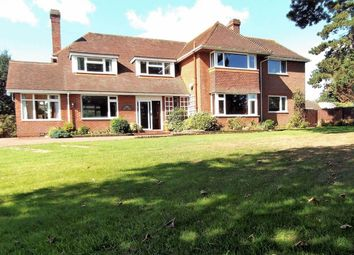 Thumbnail 6 bed property for sale in Pyebush Lane, Acle, Norwich