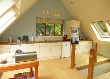Thumbnail 3 bed lodge to rent in Bittaford, Ivybridge