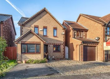 Thumbnail 3 bed detached house to rent in Cowley, East Oxford