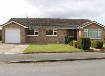 Thumbnail 3 bedroom bungalow to rent in Traherne Close, Lugwardine, Herefordshire
