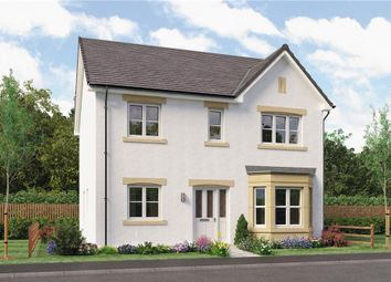 "Thumbnail 4 bed detached house for sale in ""Douglas"" at Springhill Road, Barrhead, Glasgow"